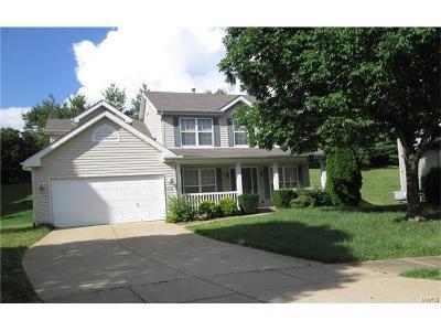 Florissant Single Family Home For Sale: 122 Riverwood Park Drive