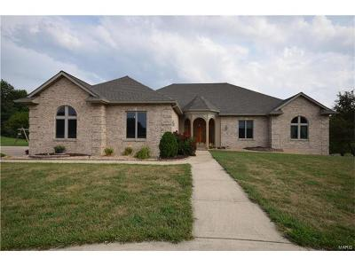 Maryville Single Family Home For Sale: 6 Eastway Court