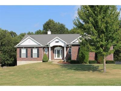 Wright City Single Family Home For Sale: 29425 Cheshire Lane