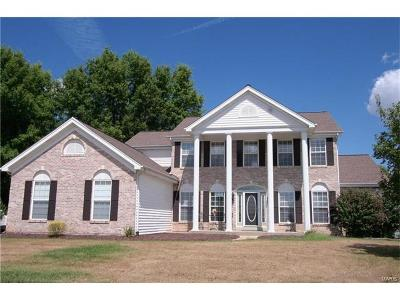 ST CHARLES Single Family Home For Sale: 301 Meadowlake Drive