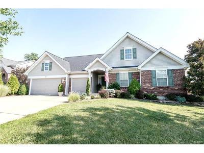 Fenton Single Family Home For Sale: 587 Oakwood Drive