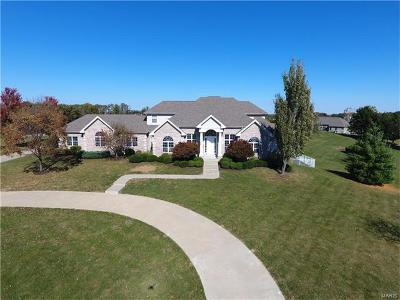 Wentzville Single Family Home For Sale: 23 Raven Court