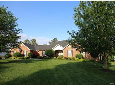 Weldon Spring Single Family Home For Sale: 782 Southbrook Forest Court