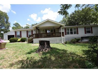 Troy Single Family Home For Sale: 408 Trail Ridge Drive