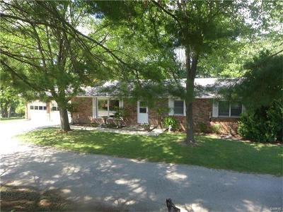 New London MO Single Family Home For Sale: $299,000