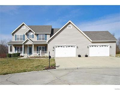 Shiloh Single Family Home For Sale: 2501 Westinghouse Drive
