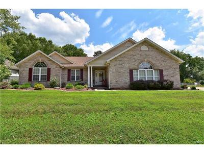 Collinsville Single Family Home Option: 12 Chelsea