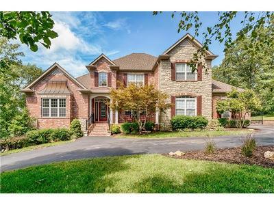St Louis County Single Family Home For Sale: 25 Balmagoun Lane