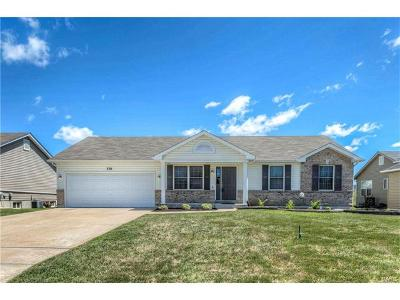 Troy Single Family Home For Sale: 336 Turkey Roost Ln