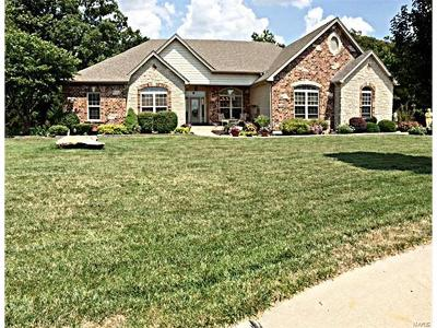 Wentzville Single Family Home For Sale: 1028 Sycamore Creek Drive