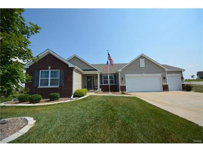 Wentzville Single Family Home For Sale: 802 Railway Circle
