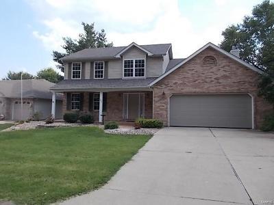 Glen Carbon Single Family Home For Sale: 209 Sturbridge Boulevard