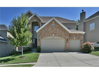 Ballwin Single Family Home For Sale: 359 Lauren Landing