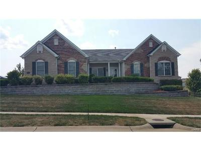 Wentzville Single Family Home For Sale: 1227 Peruque Drive