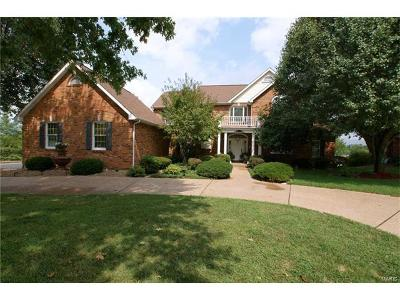 St Charles County Single Family Home For Sale: 54 Valentine Farm Lane