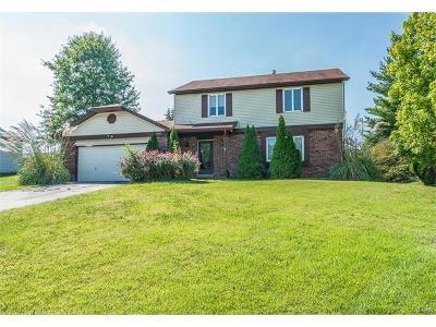 Ballwin Single Family Home For Sale: 206 Spring Oaks Court