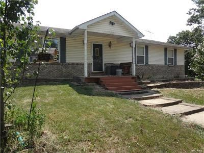 St Charles County Single Family Home For Sale: 63 Farm View Lane