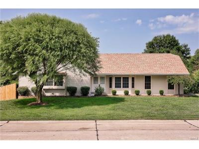 ST CHARLES Single Family Home For Sale: 841 Tower Park Drive