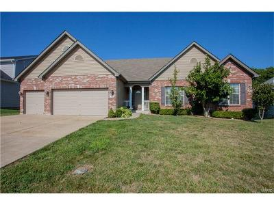 Wentzville Single Family Home For Sale: 303 Hampton Ridge Drive