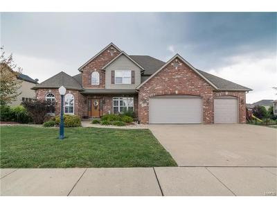 Edwardsville Single Family Home For Sale: 3305 Garvey Lane
