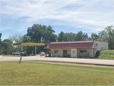 Scott County, Cape Girardeau County, Bollinger County, Perry County Commercial For Sale: 9735 State Highway 72