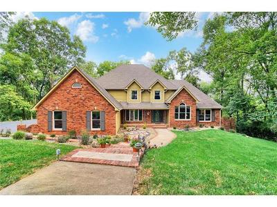 Godfrey Single Family Home For Sale: 4101 Stoneledge Drive