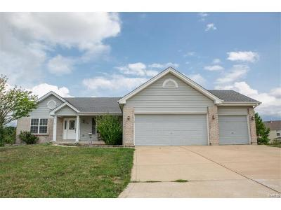 Dardenne Prairie Single Family Home For Sale: 44 Nez Perce