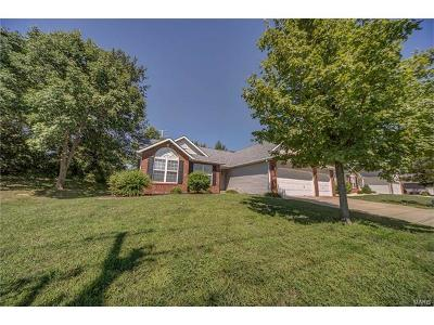 Maryville Single Family Home For Sale: 2643 Keebler Road