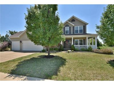 Wentzville Single Family Home For Sale: 712 Vista Springs Court