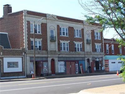St Louis Multi Family Home For Sale: 4648 Gravois Avenue