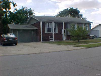 Granite City Single Family Home For Sale: 176 Briarwood Lane