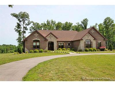 Scott County, Cape Girardeau County, Bollinger County, Perry County Single Family Home For Sale: 1624 County Road 405