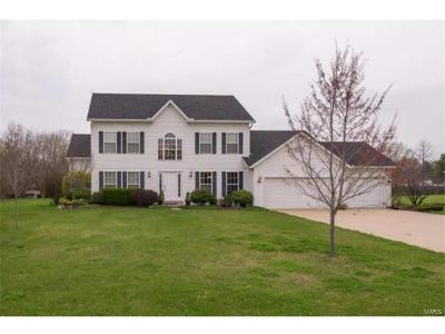 Collinsville Single Family Home For Sale: 117 South Lindenwood Drive
