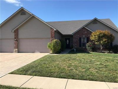 Wentzville Single Family Home For Sale: 6017 Blake Thomas Drive