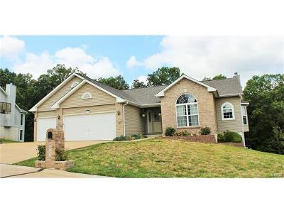 Jefferson County Single Family Home For Sale: 6047 Brookview Heights Drive