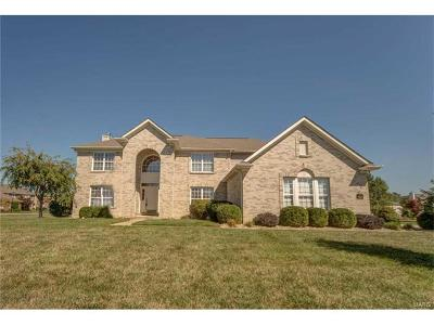 Swansea Single Family Home For Sale: 1501 Scoter Court