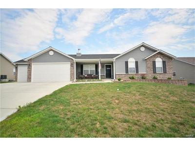 Troy Single Family Home For Sale: 249 Rockport Drive South