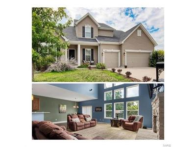 St Louis Single Family Home For Sale: 7916 Pinetop Drive