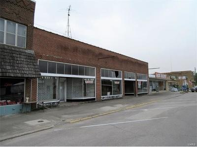 Scott County, Cape Girardeau County, Bollinger County, Perry County Commercial For Sale: 136 W Yoakum