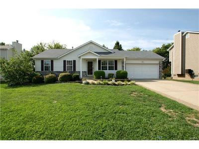 Dardenne Prairie, O Fallon Single Family Home For Sale: 206 Cherrywood Parc