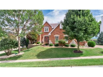 St Louis Single Family Home For Sale: 371 Bluff View Court