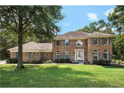 Chesterfield Single Family Home For Sale: 17710 Drummer Lane
