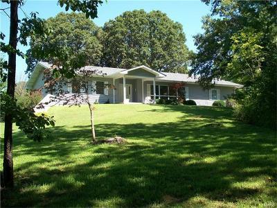 Warrenton Single Family Home For Sale: 22339 Glen Ellen Cove