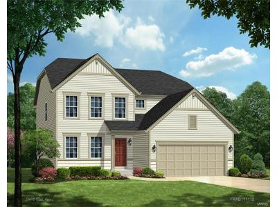 Wentzville Single Family Home For Sale: 347 Huntleigh Parkway