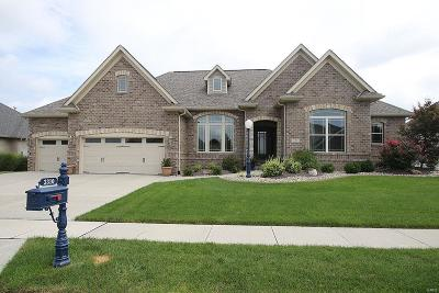 Edwardsville Single Family Home For Sale: 3310 Snider Drive