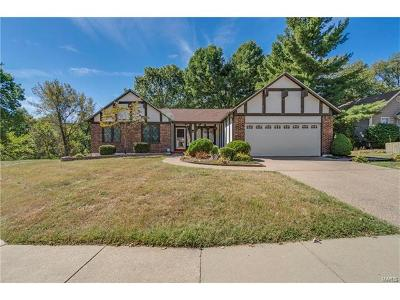 Single Family Home For Sale: 2117 Beam Place