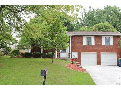 Edwardsville Single Family Home For Sale: 1260 Gloucester Drive