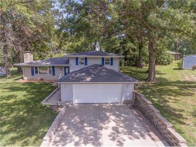 Single Family Home For Sale: 44 Aaron Drive