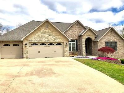 Scott County, Cape Girardeau County, Bollinger County, Perry County Single Family Home For Sale: 276 Hyde Park