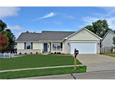 O'Fallon Single Family Home For Sale: 1431 Amber Wave Drive